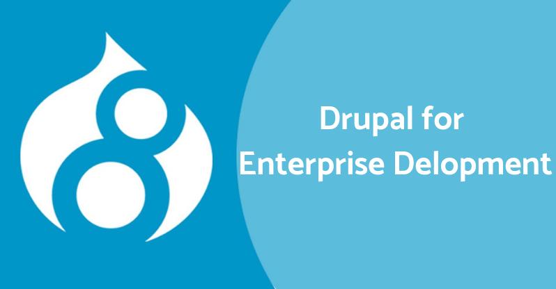 Drupal for Enterprise Development