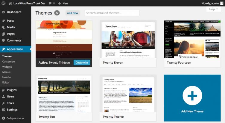 Selection of the WordPress theme